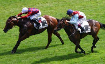Allenare un cavallo da corsa